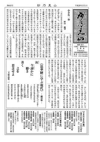 H29 3月号 妙乃見山
